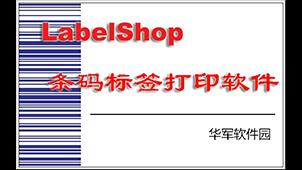 label标签