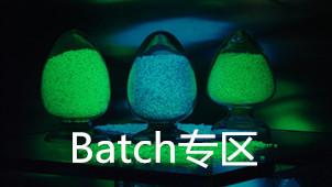 batch是什么意思
