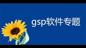 gsp软件专题