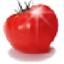 番茄花园一键重装系统