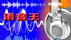 语音王软件下载专区