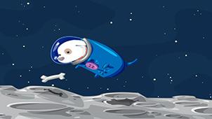 太空狗大全