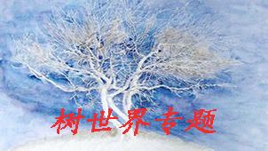 树世界专题