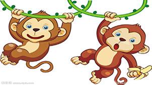 猴子吃香蕉专题