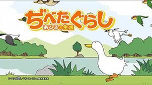 鸭子的生活大全