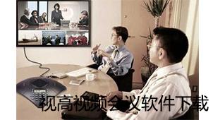 视高视频会议