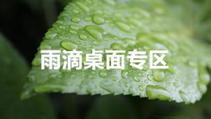 雨滴桌面专区