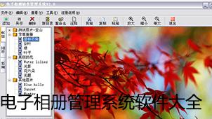 电子相册管理系统软件大全