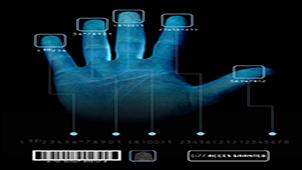 指纹识别系统