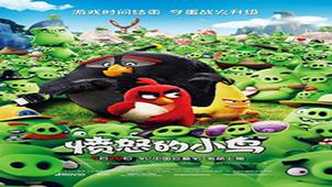 愤怒的小鸟中文版专题