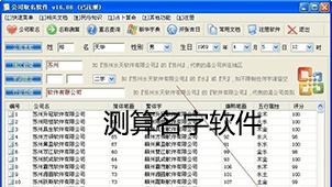 测算名字软件