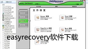 easyrecovery软件下载