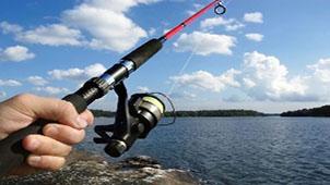 钓鱼小游戏专题
