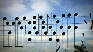 音乐简谱软件专题
