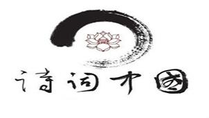 诗词中国专题