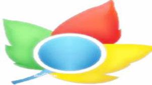 枫树极速浏览器专题