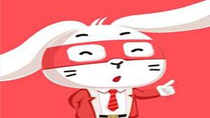 兔博士专题