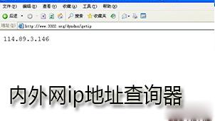 内外网ip地址查询器