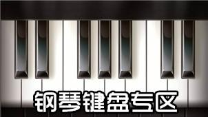 钢琴键盘专区