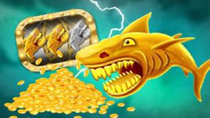 金鲨银鲨专题