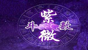 紫薇斗数专题