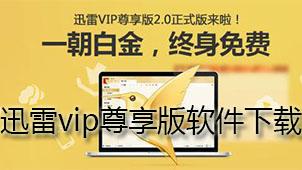 迅雷vip尊享版软件下载