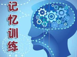 全脑开发大全