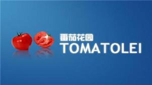 番茄花园专区