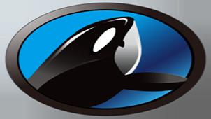 鲸鱼宝专题