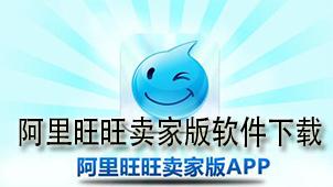阿里旺旺卖家版软件下载