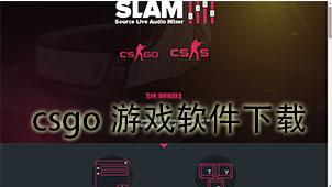 csgo游戏软件下载