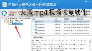 大疆mp4视频恢复软件