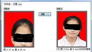 一寸照片生成器软件下载
