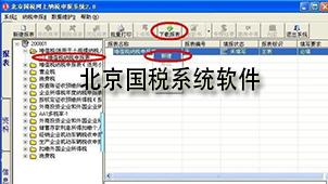 北京国税系统软件