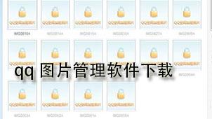 qq图片管理软件下载