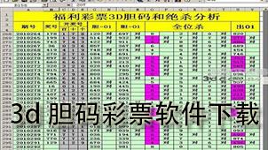 3d胆码彩票软件下载