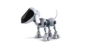 电子狗软件专区