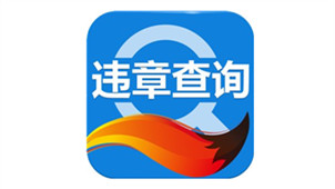 搜狐违章查询专区