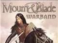 骑马与砍杀战团(Mount and Blade Warband)存档修改器 0.31