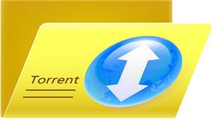 torrent文件