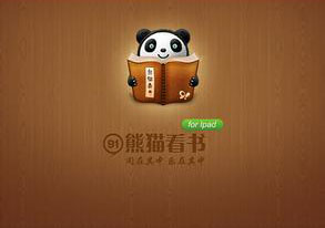 91熊猫看书大全