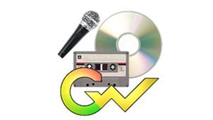 Goldwave专区