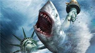 大白鲨游戏专区