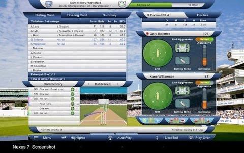 国际板球游戏大全