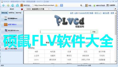 硕鼠FLV软件大全