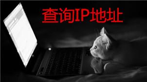 IP地址查询软件大全