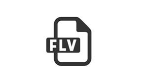 flv转换