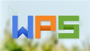 WPS转Word工具专区