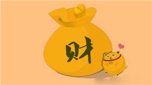 中国式理财软件