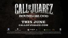 牛仔侠盗(Call Of Juarez)